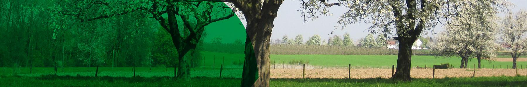 fruitteelt-banner